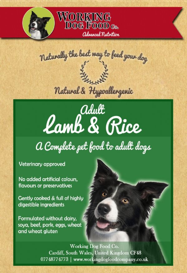 Naturally Preserved & Hypo-allergenic Adult Lamb & Rice Complete Dry Dog Food